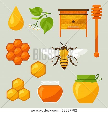 Set of honey and bee objects