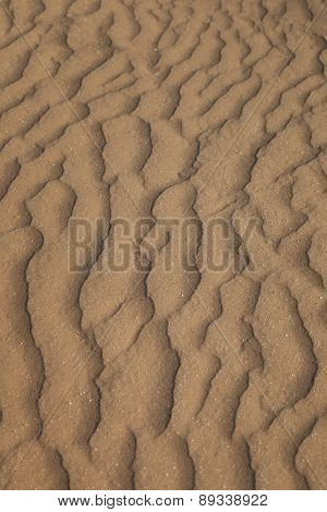 The Sand In The Desert