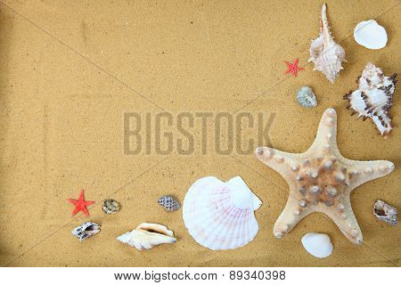 Seashells And Starfish On Sand