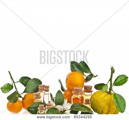 Fresh citrus with Glass bottles essences oil isolated on white background