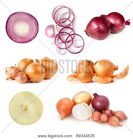 Onions collection, isolated on white background.  Includes, red, brown, and white varieties.