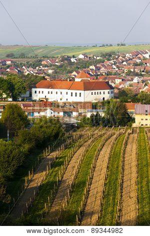 Cejkovice with vineyard, Czech Republic