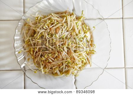 Stir fried bean sprout on the plate ready to be eaten