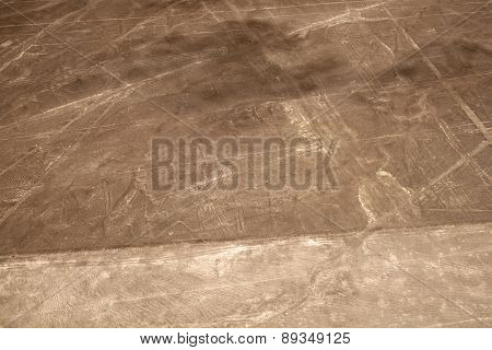 Lines and Geoglyphs of Nazca, Peru - heron