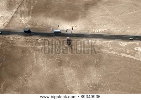 Nazca Lines, Peru - hand and tree
