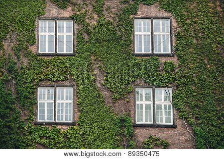 Windows in an old country house