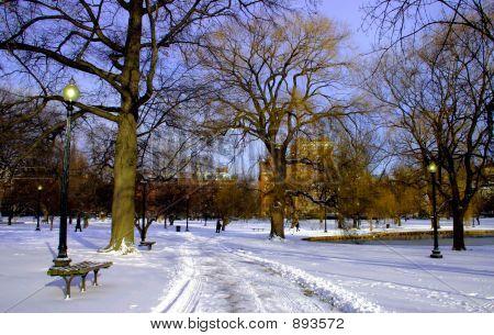 Jardim público de Boston