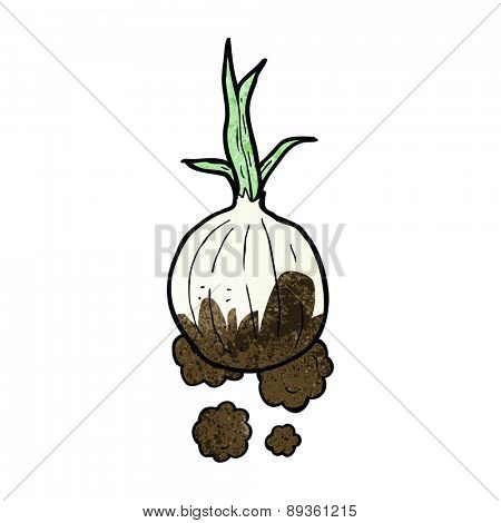 cartoon organic onion