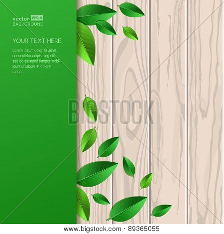 Natural Wooden Texture, Fresh Leaves And Green Background With Place For Text. Vector Spring And Sum