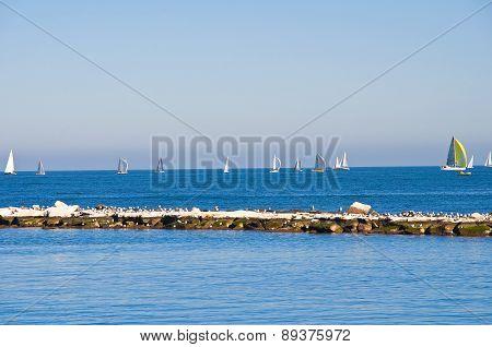 Panoramic view of Bari. Puglia. Southern Italy.