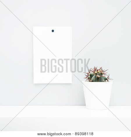 Hipster Scandinavian Style Room Interior. Mock Up. White Pot With Cactus