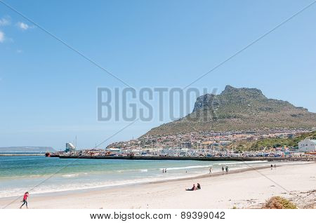 Hout Bay Harbor And Part Of The Town
