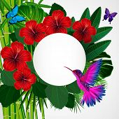 image of colibri  - Tropical floral design background with bird - JPG