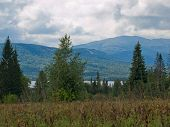 picture of backwoods  - Mountains in the forest on a cloudy day in Siberia - JPG