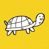 foto of tortoise  - Doodle Tortoise - JPG