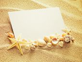 image of starfish  - Empty white card with two starfishes and shells is lying on a sea sand summer sunny background - JPG