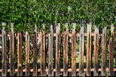 stock photo of wooden fence  - Old half - JPG