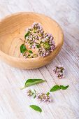 image of oregano  - flowers of oregano in wooden bowl on white table - JPG