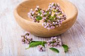picture of oregano  - flowers of oregano in wooden bowl on white table - JPG
