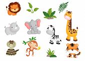 foto of jungle animal  - a vector set of many animals in the jungle - JPG