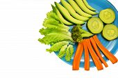 pic of vedic  - plate with vegetables on a white background - JPG