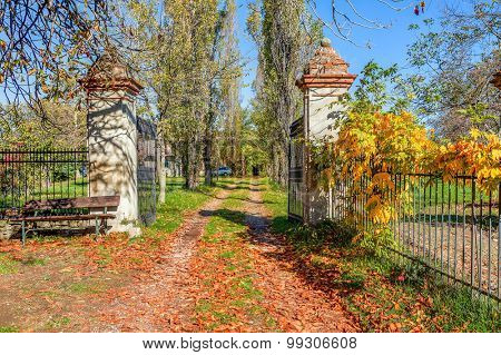 Rural pathway covered with fallen leaves and old open gates in Piedmont, Northern Italy.