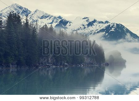 Mountain meadow in Alaska USA