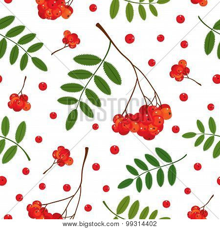 Seamless pattern with red and orange Rowan berries and leaves. Vector illustration. White background