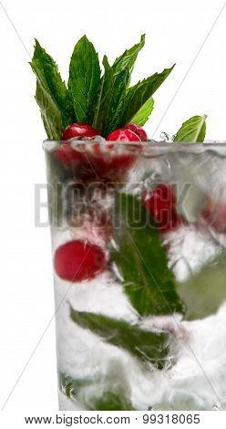Alcoholic cocktail. cranberries mint vodka