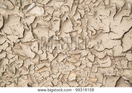 Abstract Brown Texture Of The Shriveled Sandy Soil