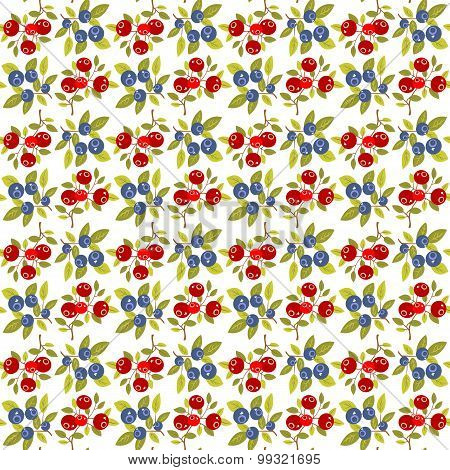 Berries White Seamless Background