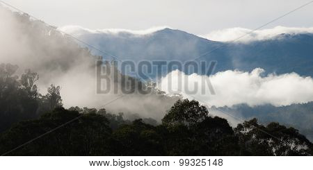Layers of misty hills