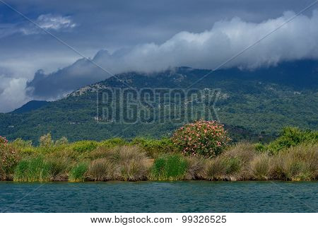 Mountains Near The River