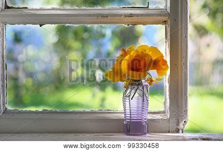 Bouquet of orange flowers on window. Rustic still life. Cosiness in the house.