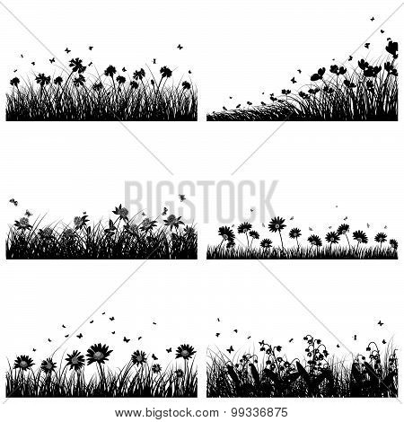 6 Meadow Backgrounds