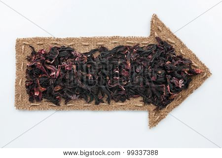 Pointer With Hibiscus Grains