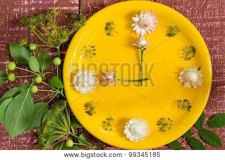 Time Of Autumn: The Flower Clock And Autumn Plants