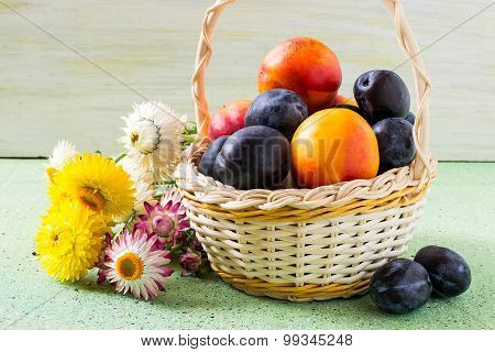 Basket With Ripe Plums And Nectarines Organic