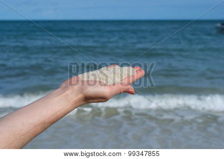 White Sand On The Palm