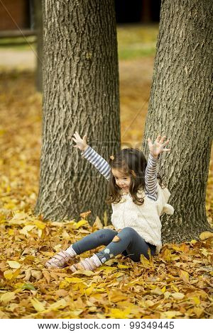 Little Girl At The Autumn Park