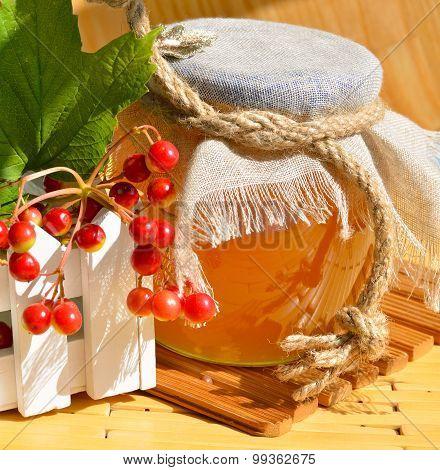 Honey Pot And Viburnum