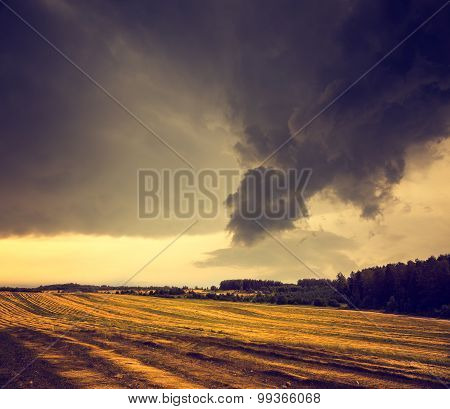 Dark Toned Landscape with Field and Gloomy Sky