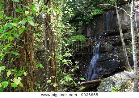 Lower De Soto Falls