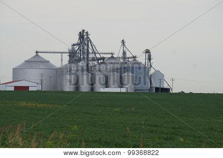 Grain Elevators and a Soybean Field