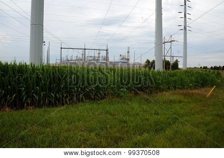 Cornfield in front of Power Plant