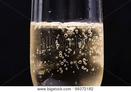 Champagne Bubble In Glass
