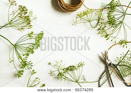 Flower Of Green Dill On Wooden Background With Copy Space. Fennel.