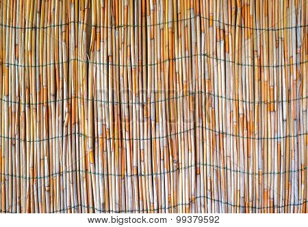 Background from bamboo sticks