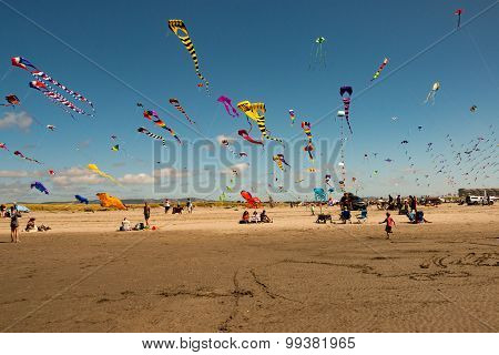 People flying kites on a beach in Washington