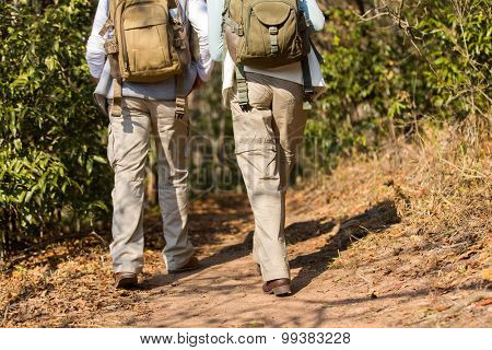 rear view of hikers walking in mountain